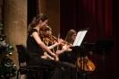 Vanocni koncert